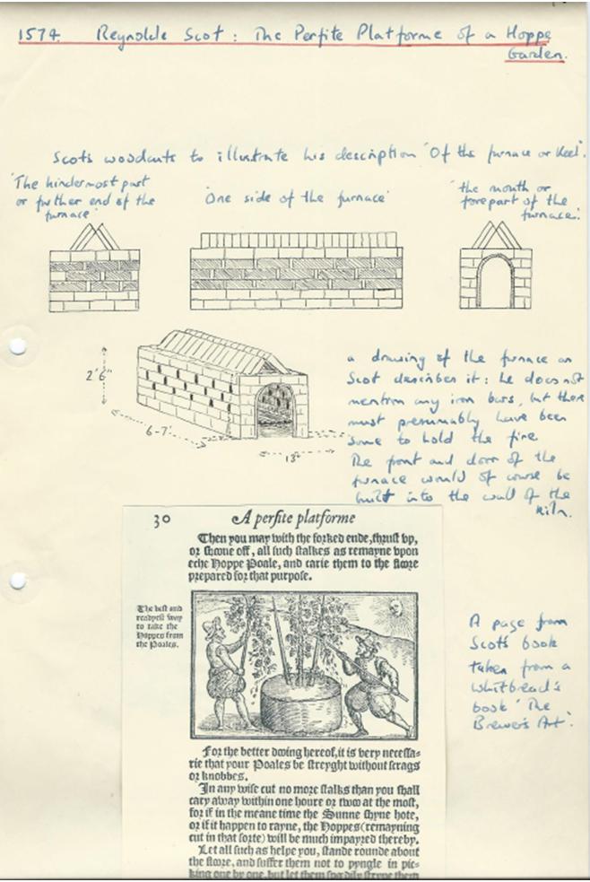 16th Century1