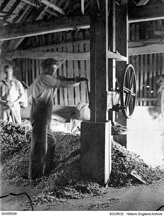 interior view showing the hops being pressed emulsion peeling great dixter oast house east sussex rother northiam